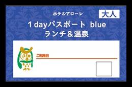 ブルーパスポート