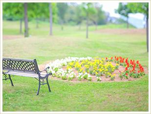 庭園 おすすめ散策コース